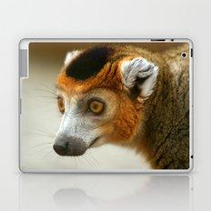 Male Crowned Lemur Laptop & iPad Skin