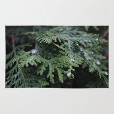 Evergreen 2 Rug