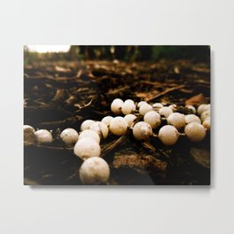 Forest Beads Metal Print