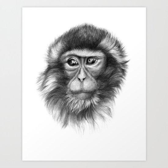 Snow Monkey G2013-069 Art Print
