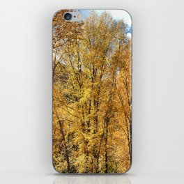 A Perfect Autumn Moment iPhone Skin