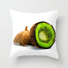 2 in 1 Throw Pillow
