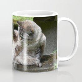 Shikari playing with his tail Coffee Mug