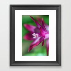 The Language of Flowers Framed Art Print