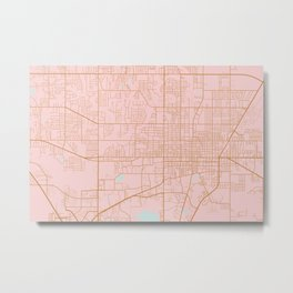 Gainesville map, Florida Metal Print