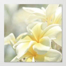 Na Lei Pua Melia Aloha e ko Lele Canvas Print