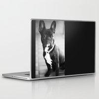 french bulldog Laptop & iPad Skins featuring French Bulldog by Falko Follert Art-FF77