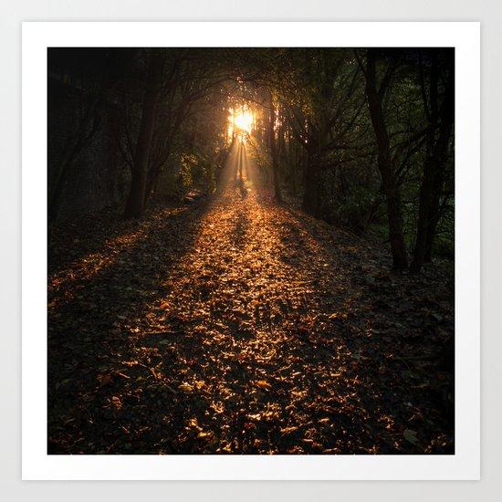 Autumn Fantasy : Let the Light Guide You Art Print