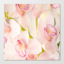 Orchid Flower Bouquet On A Light Background #decor #society6 #homedecor Canvas Print