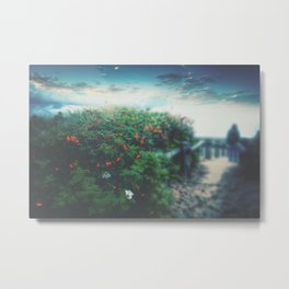 ROSE HIP REVERIE (Blue) Metal Print