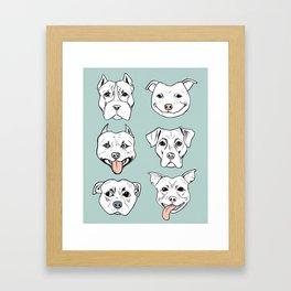 Pittie Pittie Please! 3 Framed Art Print