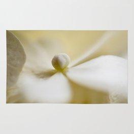 Flower Series - Dream - 8 Rug