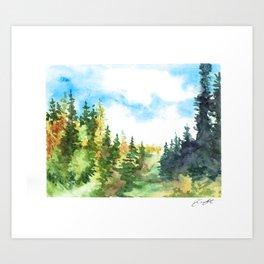 Summer Woods Art Print