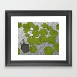 Water lilies with Florida Soft-shell Turtle Framed Art Print