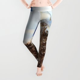 Werther - Digital Remastered Edition Leggings