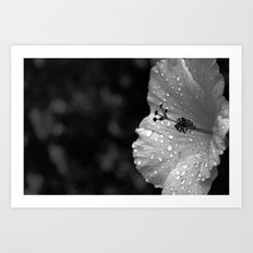 It rained on me and that is FINE  Art Print