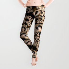 101 furets Leggings