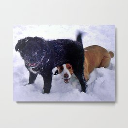 Happy Dogs in Snow Metal Print