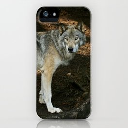 The wise wolf iPhone Case