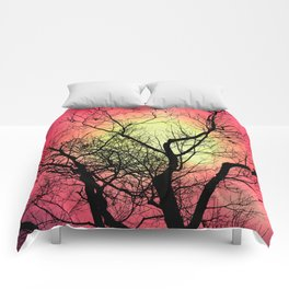 Red Sky At Dawn Comforters