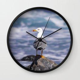 yellow-legged gull Wall Clock