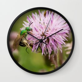Green Bee on a Thistle Wall Clock