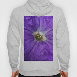 Purple Petunia Hoody