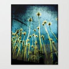 high flow::er Canvas Print