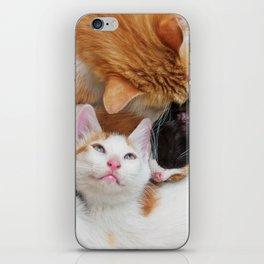 Cat family iPhone Skin