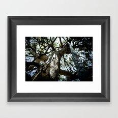 rope Framed Art Print