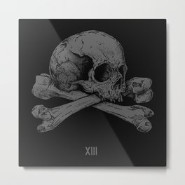 XIII Metal Print