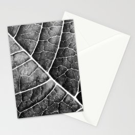 LEAF STRUCTURE no2b BLACK AND WHITE Stationery Cards