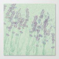 lavender Canvas Prints featuring Lavender by Dana Martin