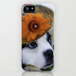 English Bulldog Puppy Wearing a Straw Hat with Bright Orange Flower for Spring iPhone Case