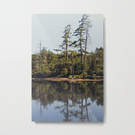 trees and reflections Metal Print