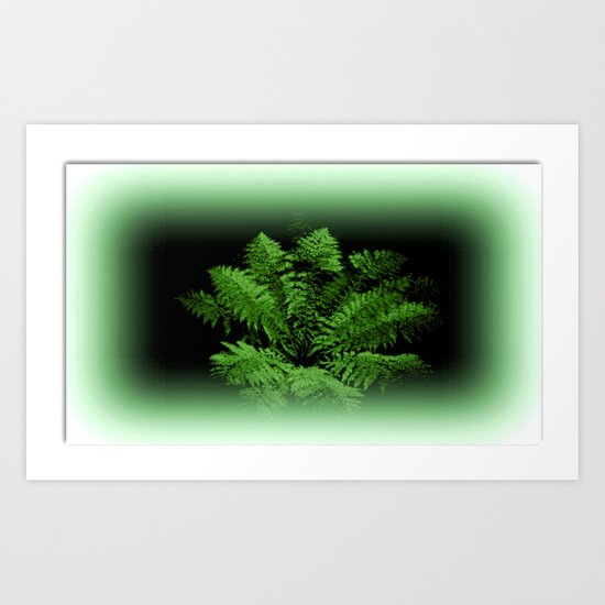 Fern from 30 metres Above! Art Print