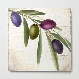 Olive Branch IV Metal Print