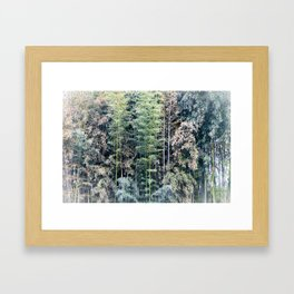 Temple Bamboo Framed Art Print