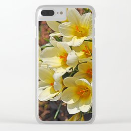 yellow crocus Clear iPhone Case