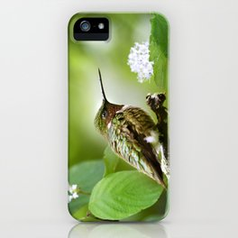 Hummingbird Sitting iPhone Case