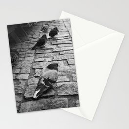 Pigeons on the streets of Tallinn Stationery Cards