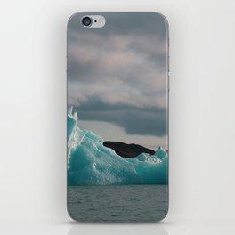Icelandic Iceberg iPhone Skin