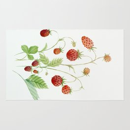 Wild Strawberries Rug