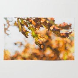 Late Fall Oak Rug