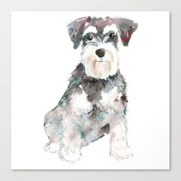 Miniature Schnauzer dog watercolors illustration Canvas Print