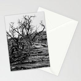 Kings Canyon Lightning Struck Tree Stationery Cards