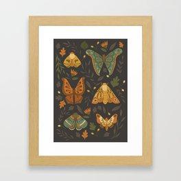Autumn Moths Framed Art Print