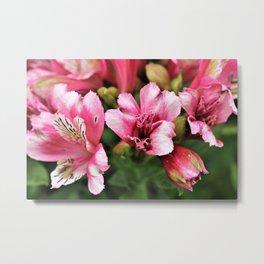 Passionate Pink Petals - Hope Metal Print