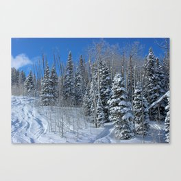 Summit Express Going Up! Canvas Print