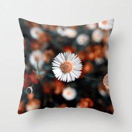 Daisy Day Dream Throw Pillow